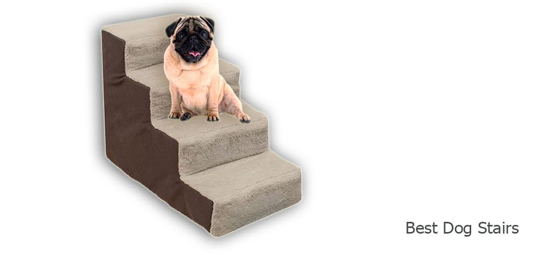 Best Dog Stairs