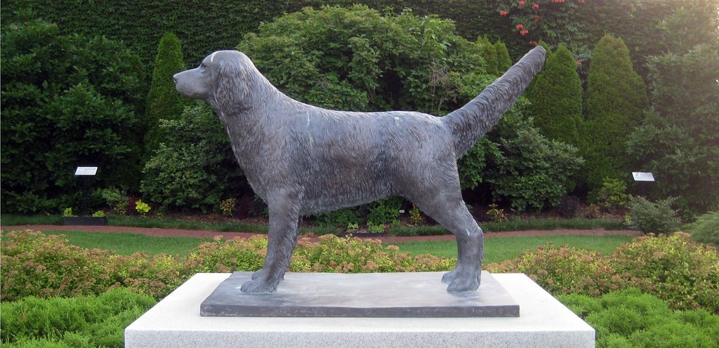 Things to Consider Before Purchasing The Best Dog Memorial Stone
